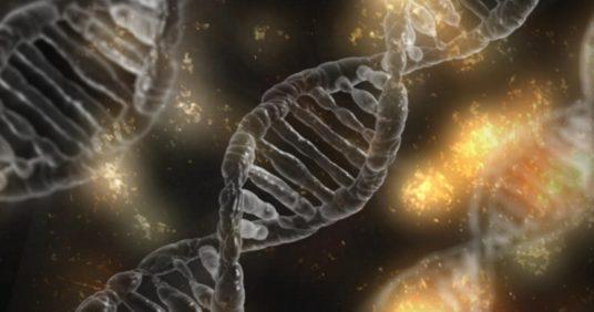 Test di frammentazione del DNA spermatico